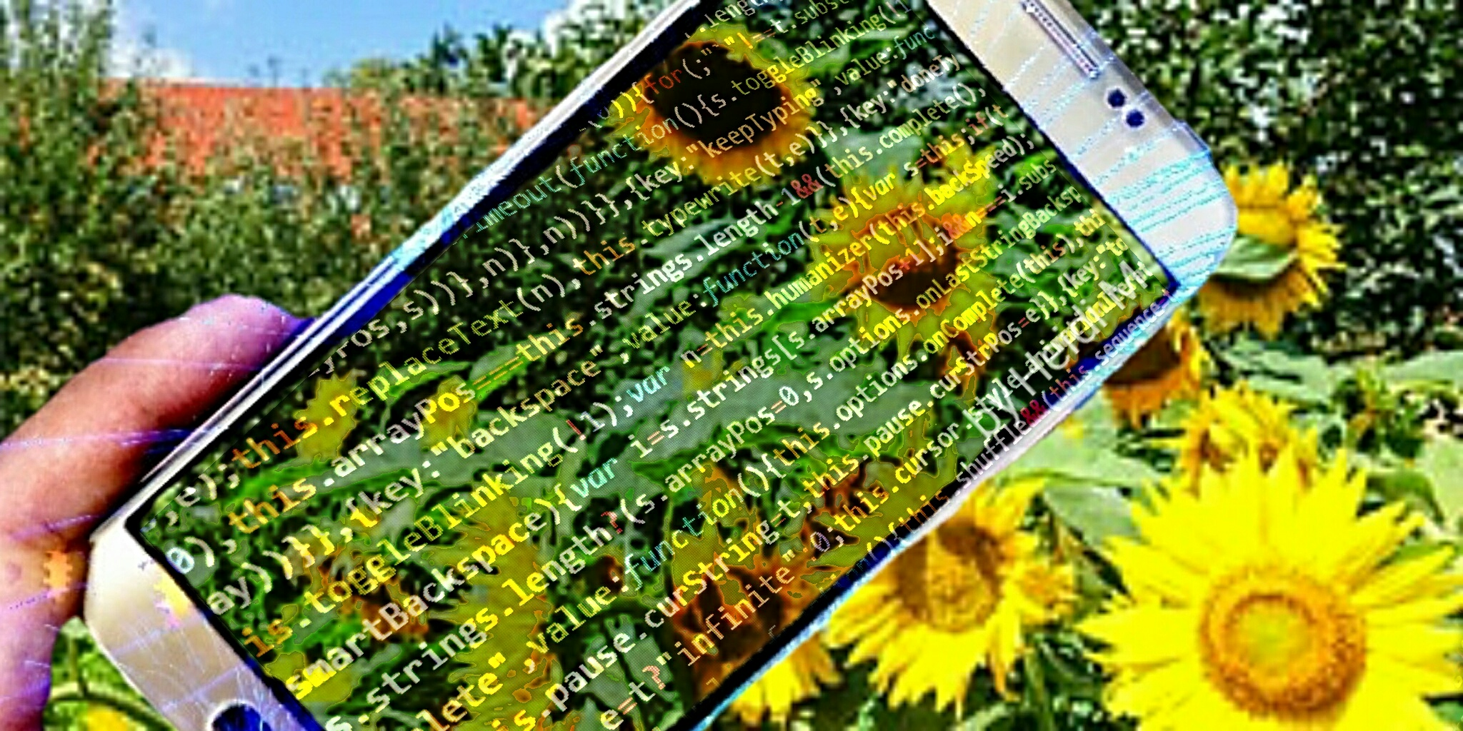 A mobile phone with coding text on it as an overlay on a sunflower background.