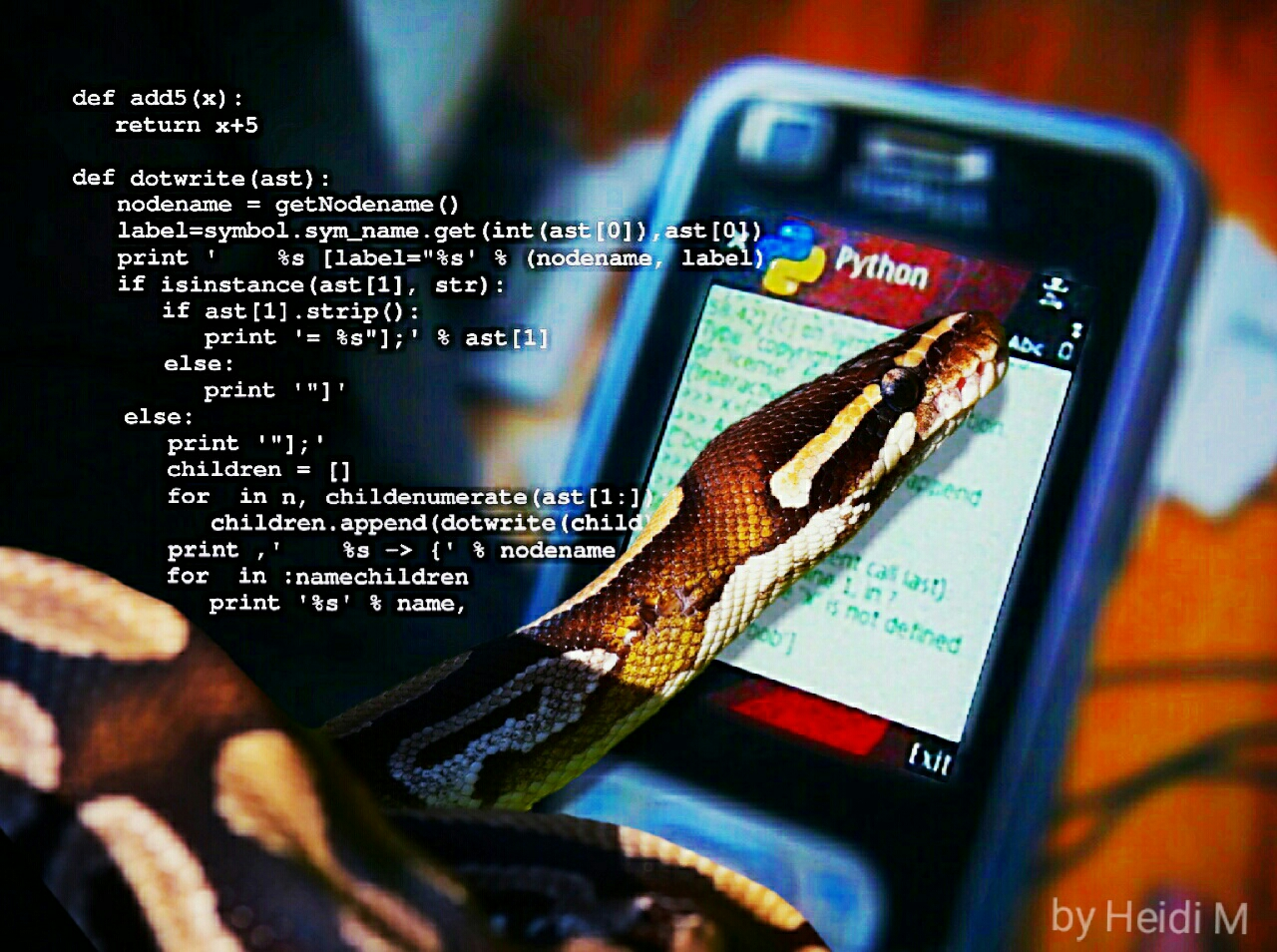 Python snake reading Python code on a phone
